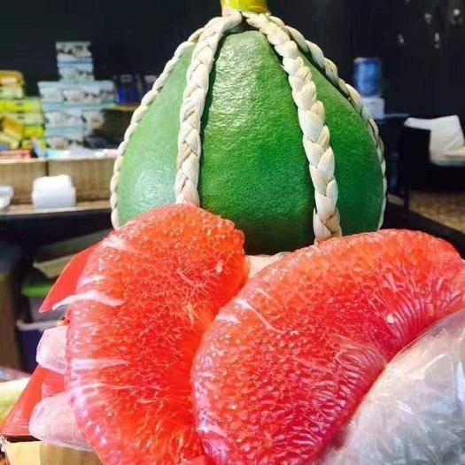 平和县泰国红宝石柚苗 包邮 正宗泰国红宝石青柚苗 基地直发 可签合同 品种有保证