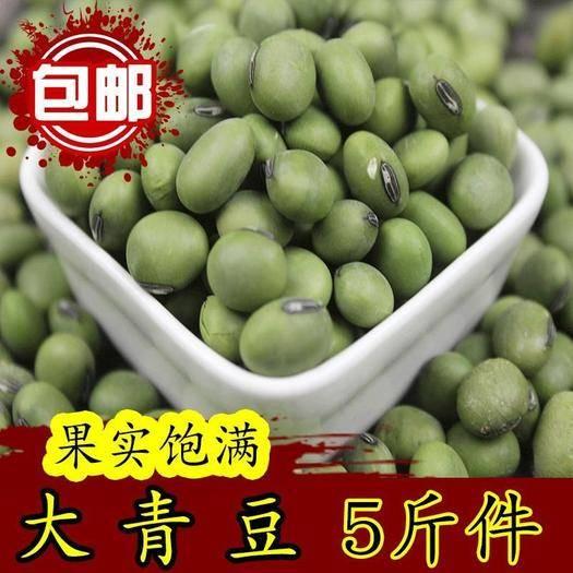 唐山迁安市 大青豆可吃可种营养大青豆5斤装包邮