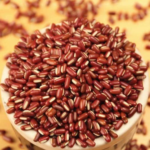 南陽臥龍區 赤小豆5斤赤豆 農家自產正宗長粒赤小豆薏米粥 五谷雜糧新貨包