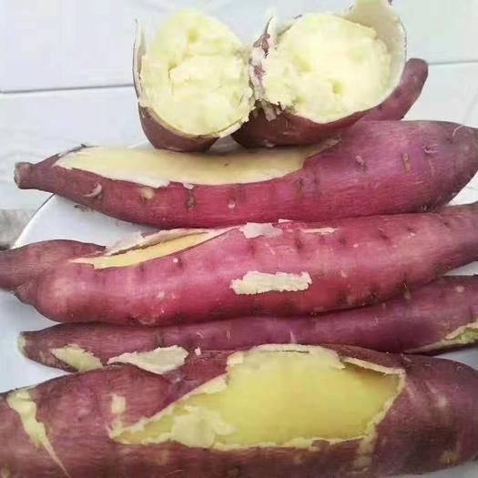 西安临潼区 红薯新鲜陕西沙地小香薯农家蜜薯地瓜板栗番薯连箱5/10斤