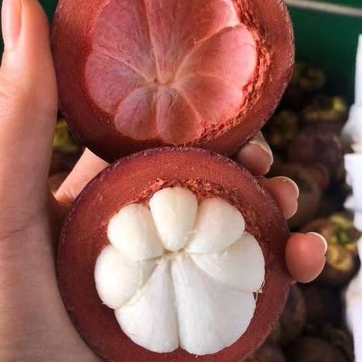 昆明嵩明縣 【泰國山竹5斤大果】當季新鮮水果