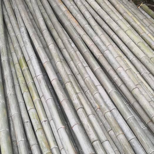 衡陽耒陽市毛竹 香蕉竹4.5米尾3.5以上,可定制規格,