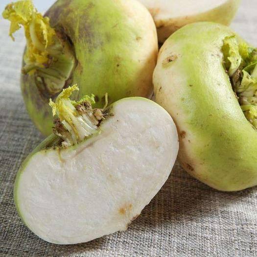和田和田县白灵菇 新疆第一碱性食物天然绿色恰玛古