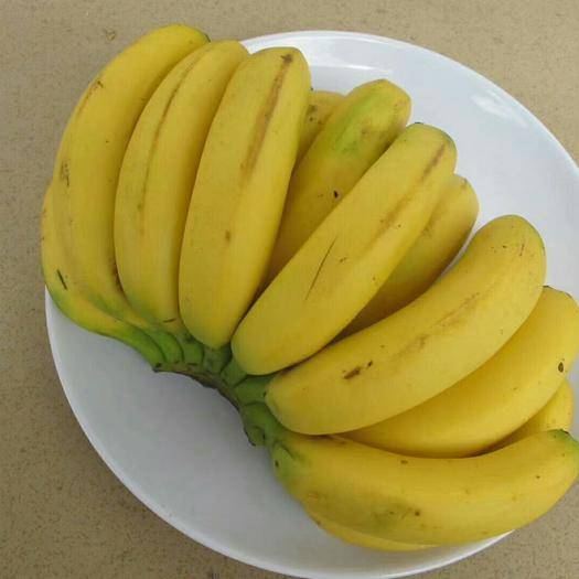 南宁 广西高山香甜新鲜大香蕉10斤包邮应季芭蕉不打药七分成熟发货