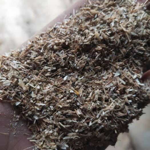 聊城東昌府區碎小麥 質量好價格低支持看貨