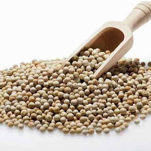 安國市 白胡椒 無硫顆粒均勻 藥食同源可做調料一公斤起包郵