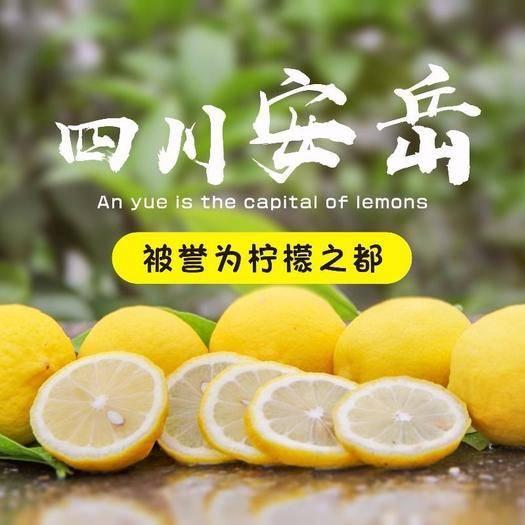自貢 包郵四川安岳黃檸檬凈重10斤5斤新鮮當季水果泡水奶茶店檸檬