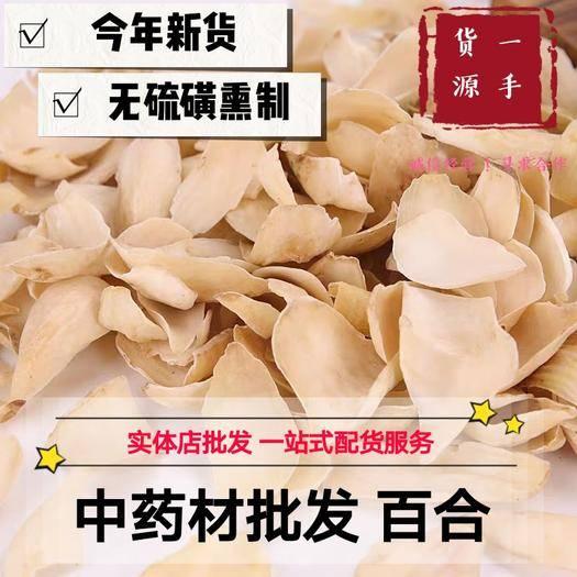 亳州 百合 龙牙百合 产地直销量大从优 包邮