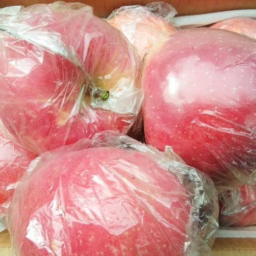 临汾红富士苹果 顺丰包邮山西红富士冰糖心脆甜大果95-110mm24小时发货