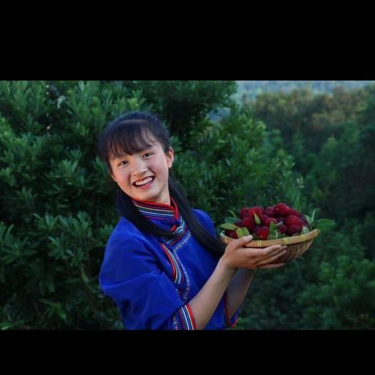 """懷化靖州苗族侗族自治縣 當季水果,快來嘗鮮,我在中國""""楊梅之鄉""""等你!??3"""