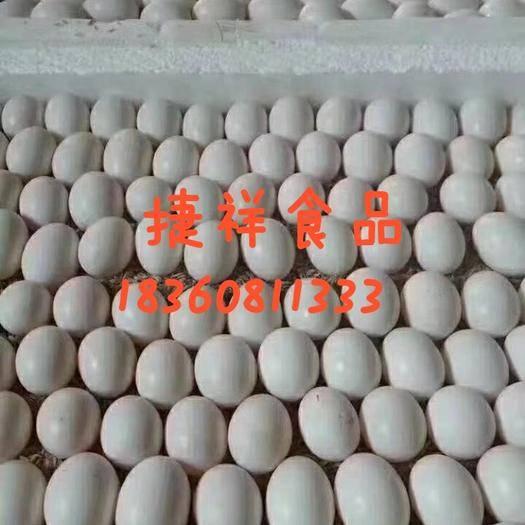 無錫錫山區 新鮮鴿蛋 雙母鴿蛋 商品鴿蛋 農家散養 鴿蛋 信鴿蛋 鴿子蛋
