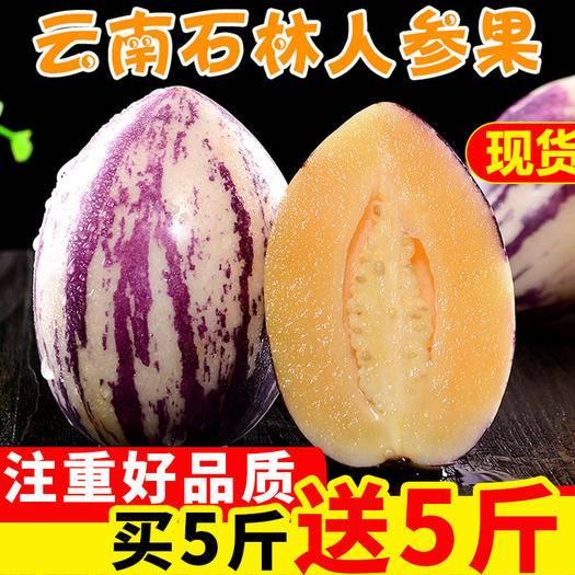 昆明 云南人參果新鮮現貨當季水果孕婦低糖水果 包郵一件代發