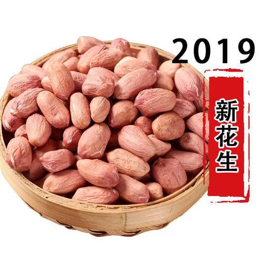 杞縣 2019年當季優質手剝花生米!發芽率高花生種!壞損包賠!包郵