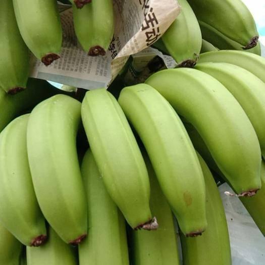 儋州市 海南香蕉3月16号