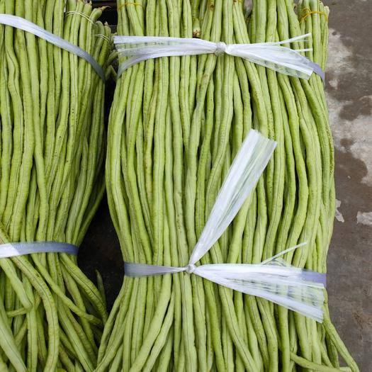 博白縣白條豆角 豇豆,40到70公分長,鮮嫩可口