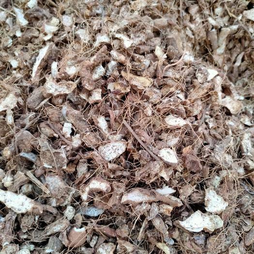 内乡县小黄姜干姜片 供应优质黄姜片50吨
