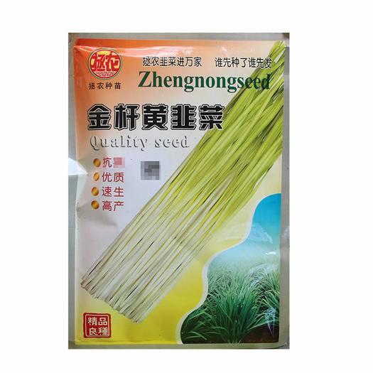 南靖縣韭菜種子 優質韭黃種子 黃韭一號種子富韭黃 金桿黃韭黃種子抗寒韭黃蔬菜