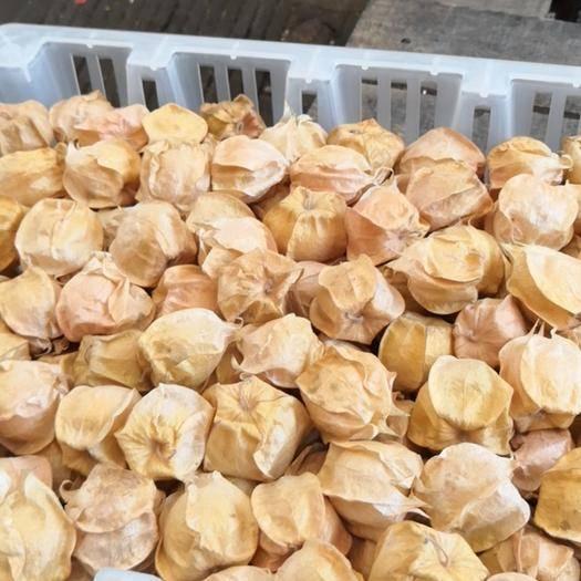 绥化 灯笼果东北特产黄姑娘新鲜精品水果