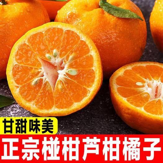 湘西永顺县 湖南鲜湘西椪柑橘子5斤/10斤新鲜桔子孕妇水果纯甜蜜橘芦柑橘