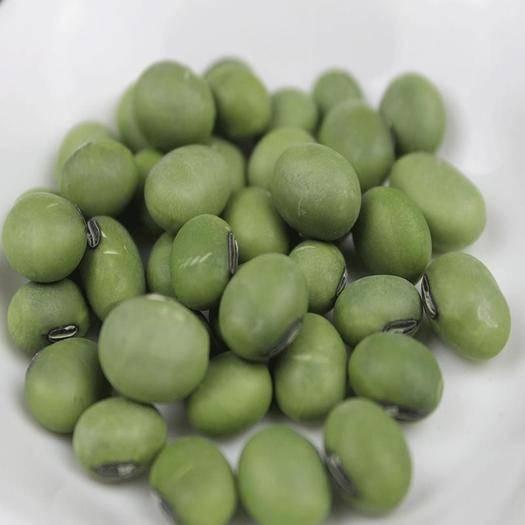 濮阳青黄豆 2019年自家农场种植单青豆大青豆豆浆