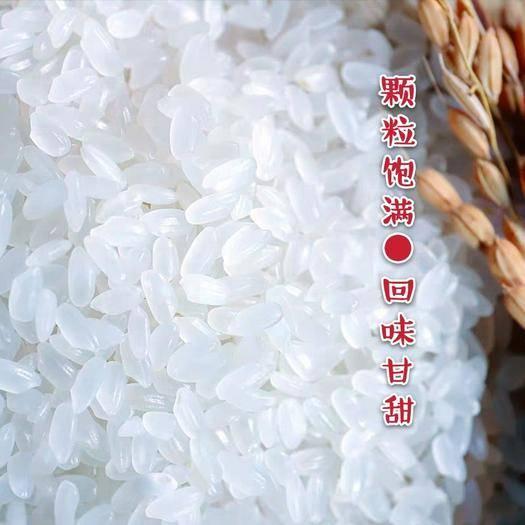 黑山縣 東北長粒大米 長粒香米 新米上市 限時促銷 一件包郵