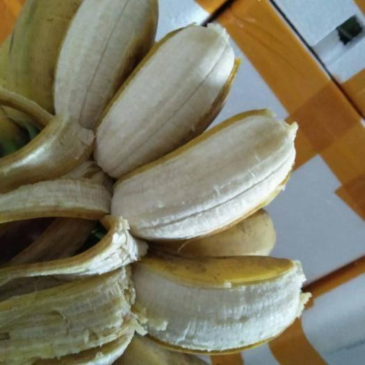 南寧西鄉塘區 自家種植小米蕉28元9斤凈果包郵