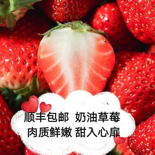 東港市 壞果包賠新鮮牛奶奶油草莓鮮果孕婦應季水果一件代發