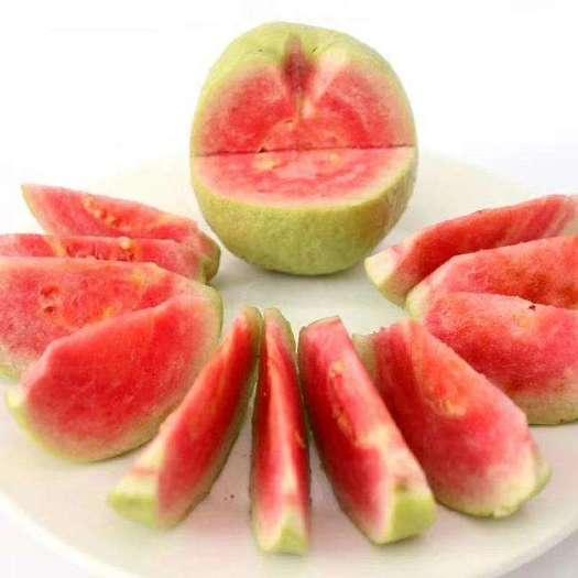 玉林北流市 红心芭乐番石榴 新鲜水果10斤装果园直销 整箱包邮当应季