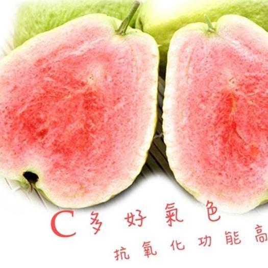 玉林北流市 红心芭乐 台湾红宝石芭乐 颜色好看 口味正宗十斤一件一件包