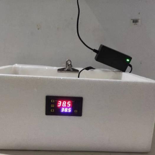 庆阳正宁县分类盒 小鸡孵化器水床包教技术
