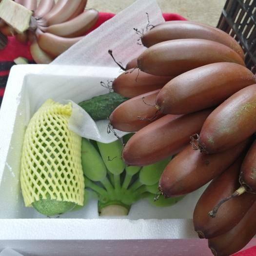 南宁 红蕉红皮美人蕉一件代发大宗批发九斤30元五斤20元快递包邮