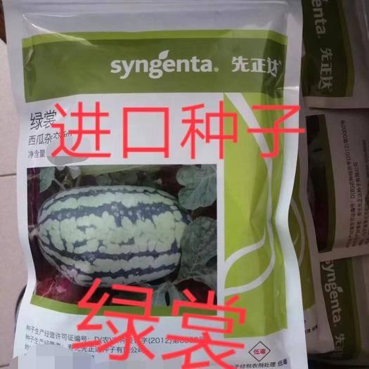 周口扶沟县绿裳西瓜种子 绿裳~进口原种一代杂交品种,大果耐湿热综合抗性强12斤以