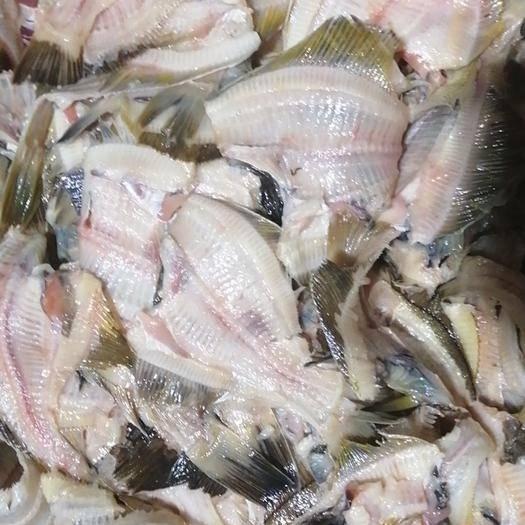 大连庄河市沙里钻鱼 一手饲料鱼