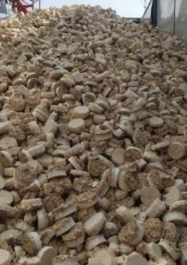 德州寧津縣 金針菇根,牛羊飼料