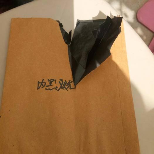 安丘市桃子套袋 高檔果品多規格單雙層套袋包郵