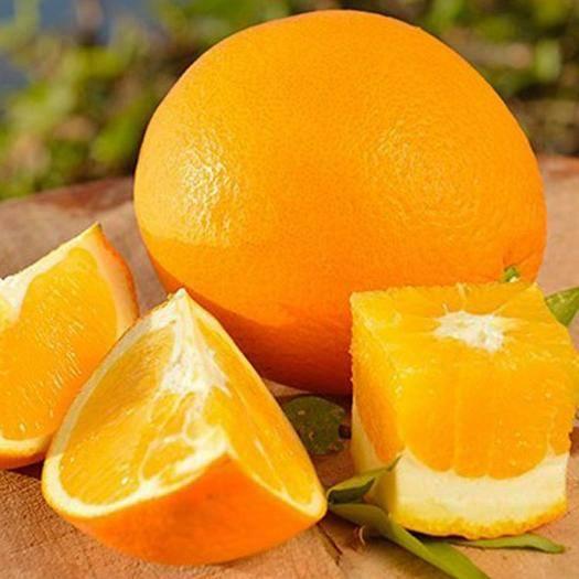 赣州寻乌县 20斤装正宗赣南脐橙寻乌甜橙子抗病毒疫情水果果农果园促销