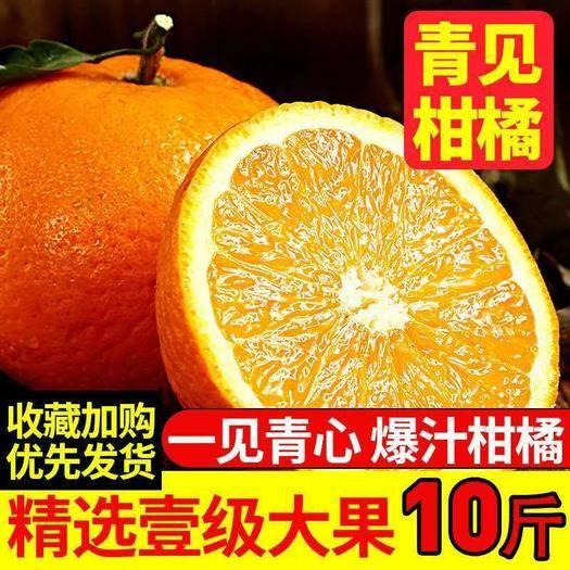 蒲江县青见柑桔 【爆汁】四川青见橘橙新鲜孕妇水果当季桔子10斤柑橘2/5斤非