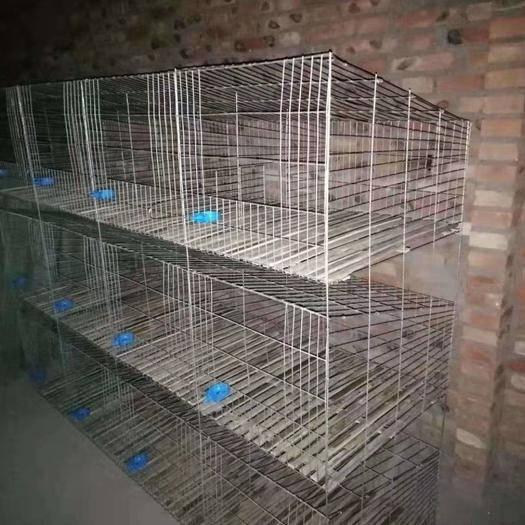 郴州汝城县养殖设备 兔笼,兔子养殖笼
