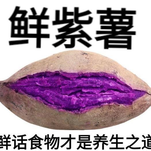 遷安市 小紫薯富跴小紫薯富含花青素營養天然單果二兩左右小果十斤裝包郵