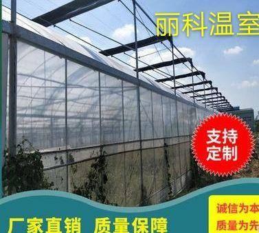 巢湖玻璃温室大棚 温室大棚,联体大棚,外遮阳连体大棚,内遮阳连体大棚