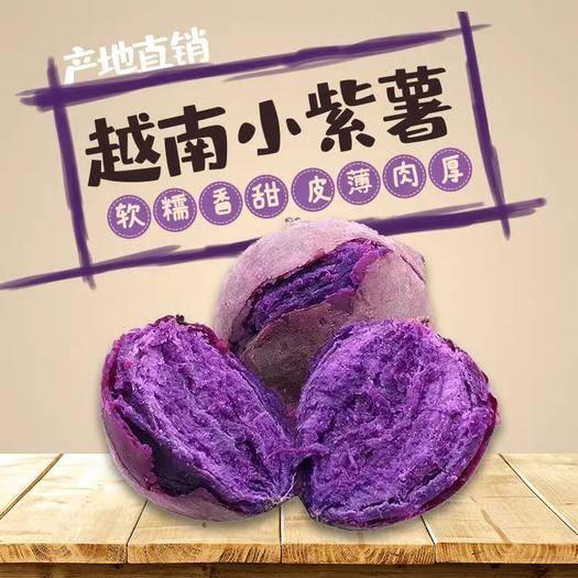 南寧 【正常發貨】正宗越南紫薯沙地小番薯5斤裝包郵