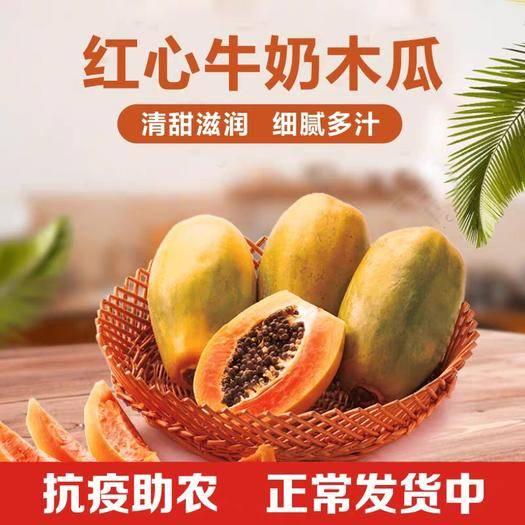 昆明 云南冰糖心红心木瓜10斤牛奶木瓜新鲜时令水果一件代发