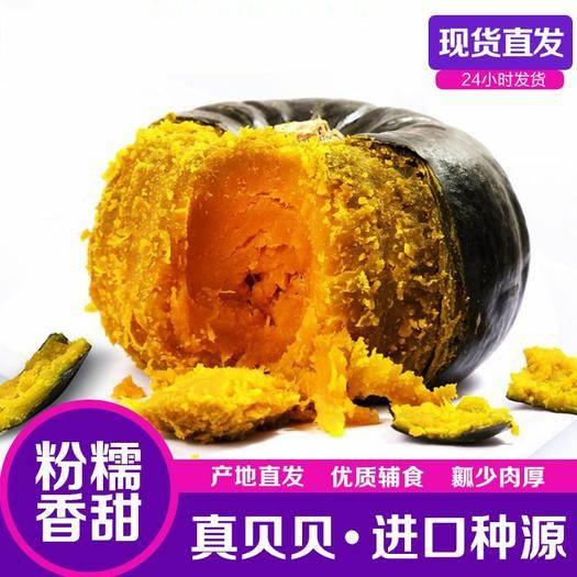 溫嶺市 貝貝南瓜板栗小南瓜味甜新鮮蔬菜日本進口種源老南瓜板粟寶寶輔食
