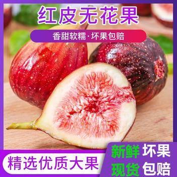 包邮新鲜无花果红皮水果现摘现发品仙奶浆蜜果非青皮无花果