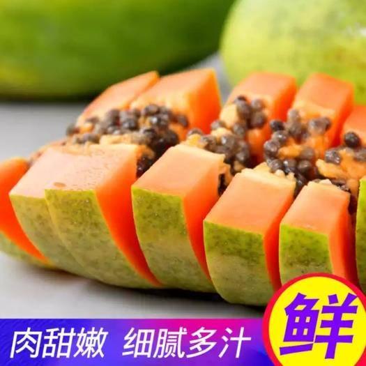 昆明官渡區 云南紅心牛奶木瓜新鮮部分包郵現摘現發5斤