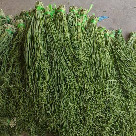 大理宾川县 宾川贡菜基地采收,人工削皮,无老皮颜色绿新货供应品相干净漂