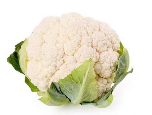 洋县白花菜 精品花菜产地直销  紧花乳白色