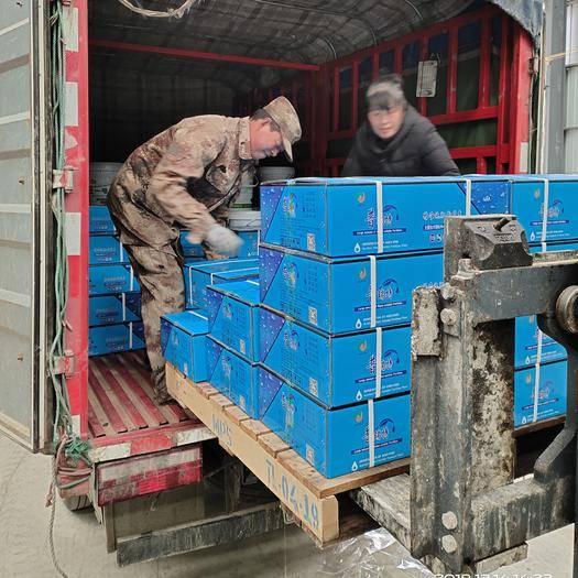 徐州贾汪区 高钾 大量元素水溶肥膨果着色 增产增甜20公斤箱装冲施肥包