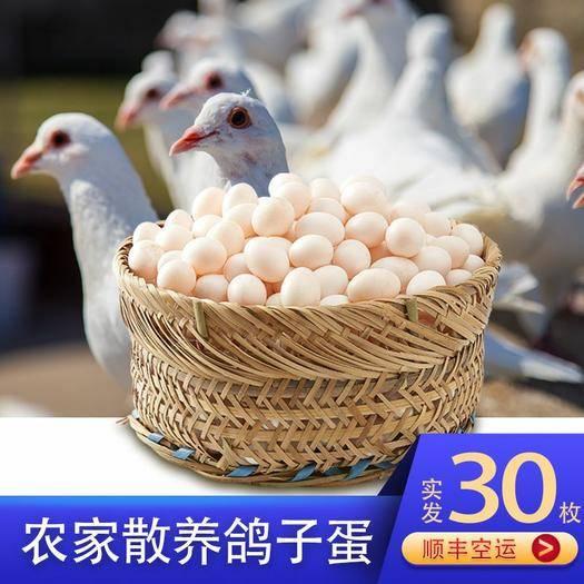 安陽安陽縣 【破損包賠】新鮮鴿子蛋農家雜糧散養鴿蛋寶寶孕婦營養蛋包郵