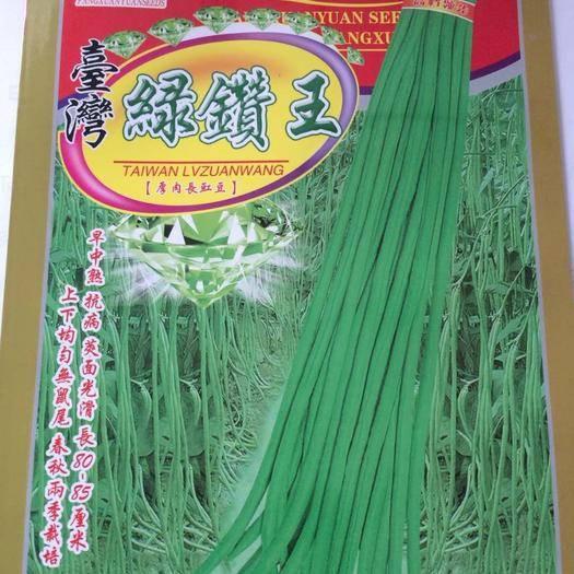 周口扶沟县油青豆角种子 绿钻王~中早熟特长特高产不易早衰,耐热耐寒亩产10000